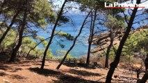 L'île Verte, paradis émeraude au large de La Ciotat