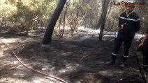 Gard : l'incendie est fixé, 488 hectares brûlés