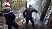 Incendie dans le Gard : 488 ha parcourus, le feu ne se propage plus