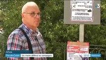 """Pas-de-Calais : un maire défend les """"bruits de la nature"""" de son village"""