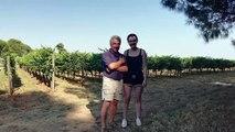 Woofing dans l'Hérault : Jane, irlandaise, 20 ans