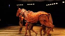 Acting Alongside Warhorse's  Puppet Animals!