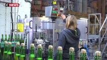 Nord : l'engouement des Français pour la bière artisanale