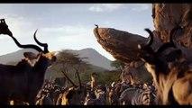 El Rey León Película - 'El verdadero rey'