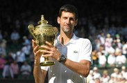 5 Infos You Need to Know About Wimbledon