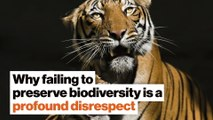 Why failing to preserve biodiversity is a profound disrespect