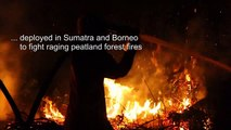 Indonesia battles forest fires