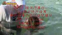 라이센스사이트→←↑온라인마이다스/필리핀온라인/pb-1212.com/pb-1212.com/pb-1212.com/pb-1212.com/pb-1212.com/pb-1212.com/pb-1212.com/추억의바카라/→←↑라이센스사이트