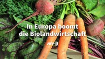 Videografik: Biolandwirtschaft in Europa boomt