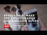 #FeedGoals: Make Your Photos Look Like a Million Bucks