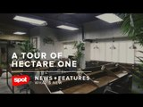 A Tour of Hectare One, Erwan Heussaff and Nico Bolzico's New Office