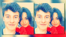 Why Camila Cabello And Shawn Mendes Wont Confirm Romance Anytime Soon