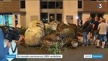 Toulouse : des permanences LREM à nouveau visées par des agriculteurs anti-Ceta