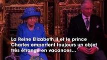 La Reine Elizabeth II et le prince Charles emportent toujours une poche de leur propre sang en voyage