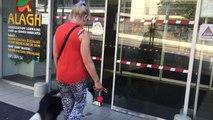 Lorraine : un chien au chevet des personnes handicapées