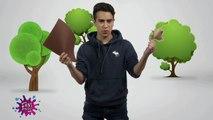 Nico Domini habla sobre el reciclaje | Nico Positivo | Prog #78