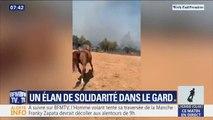 Incendie dans le Gard: cette monitrice d'équitation a perdu l'un de ses chevaux