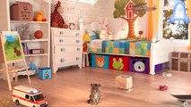 Play Little Kitten My Favorite Cat Pet Care Game - Fun Baby Kitten Animation Mini Games For Children
