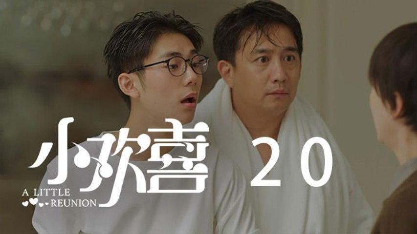 小歡喜 20 | A Little Reunion 20(黃磊、海清、陶虹等主演)