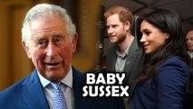 Did Prince Charles Just Reveal Meghan - Harry Baby Secret