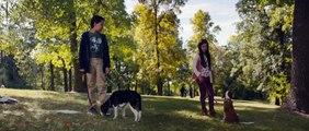 Mes autres vies de chien Bande-annonce VF (Comédie 2019) Dennis Quaid, Kathryn Prescott