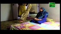 Mehmoodabad Ki Malkain Episode 132 & 133 - 5th August 2019