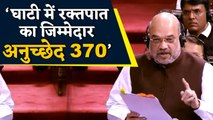 Article 370 की वजह से Valley में हुआ रक्तपात: Amit Shah | वनइंडिया हिंदी
