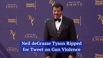 Neil deGrasse Tyson's Comments On Gun Violence