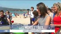 Regardez les premiers pas d'Amandine Bégot, la journaliste de RTL, qui a fait hier soir ses débuts comme joker au 19.45 d'M6