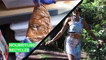 Meilleurs projets pour le recyclage des aliments