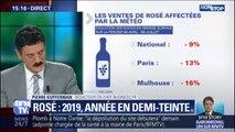 2019, année en demi-teinte pour les vins rosés