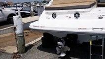 2019 Sea Ray SLX 350 Boat For Sale at MarineMax Long Island