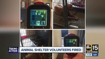 Animal shelter volunteers fired