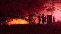 İZMİR Ormanlık alanda çıkan yangın söndürüldü
