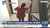 Privés d'ascenseur depuis un mois, ces habitants de Noisy-le-Sec expriment leur colère
