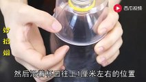 【Waste utilization - plastic bottles】饮料瓶这样割两刀,解决了家家户户的大难题,看完也赶紧做一个