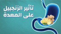 تأثير الزنجبيل على المعدة