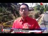 Misteri Pohon Sengon, 'Tersangka' Listrik Padam Massal