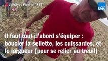 Le Poitou vu du ciel - (Valentin BOISSAIS)