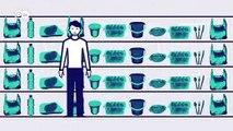 Fakten: Du und das Plastik | Made in Germany