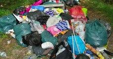 50 mètres cubes d'ordures ont été déposés anonymement dans la forêt de Fontainebleau