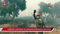 Bodrum'daki orman yangını büyüyor