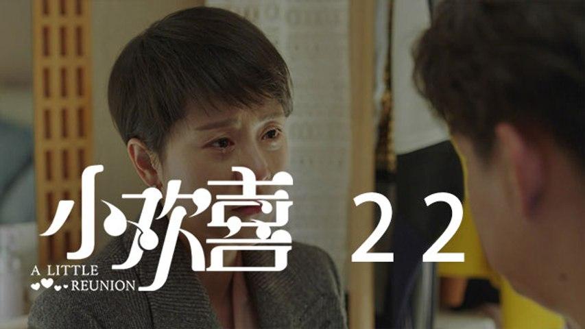 小歡喜 22 | A Little Reunion 22(黃磊、海清、陶虹等主演)