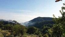 Vaucluse : deux hectares de forêt détruits dans un incendie au Barroux