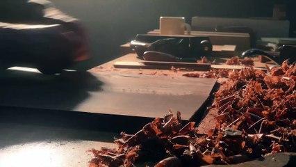 Apple ASMR — Satisfying woodshop sounds — Shot on iPhone