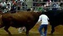 Corridas de toros sin toreros