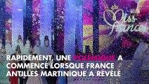 Miss France 2020 : Une candidate de Miss Martinique poussée à l'abandon à cause de ses cheveux ?