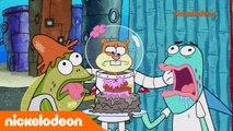 Bob l'éponge | Un enfer d'anniversaire | Nickelodeon France