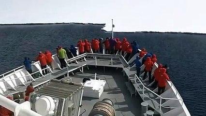 crashing our ship into ice shelf antarctica expedition