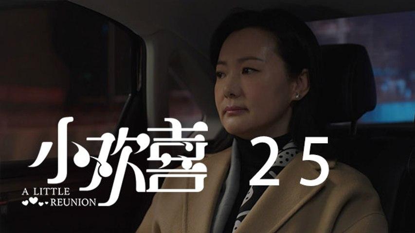 小歡喜 25 | A Little Reunion 25(黃磊、海清、陶虹等主演)